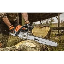 За горското стопанство и дърводобива